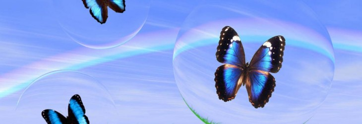 3d-butterfly-wallpaper