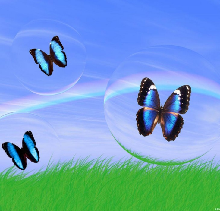 3d butterfly wallpaper high definition wallpapers high