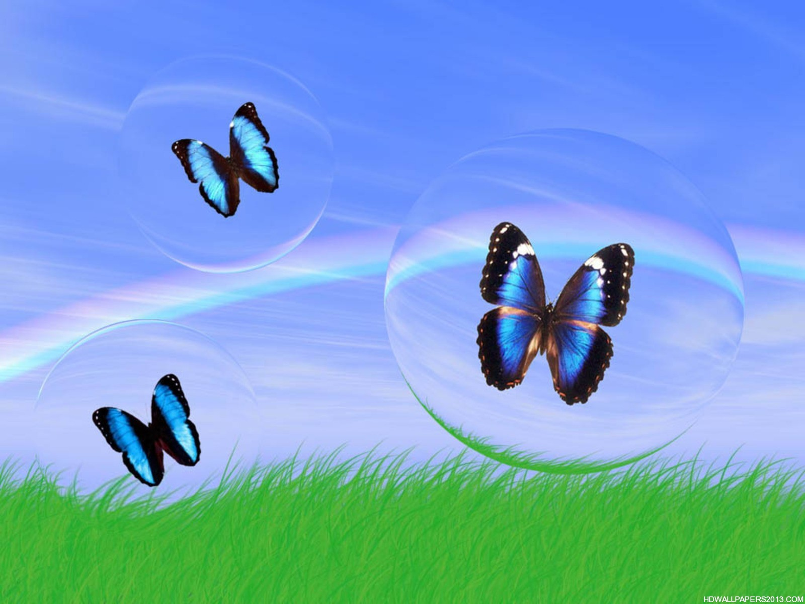 3D Butterfly Wallpaper | High Definition Wallpapers, High ...