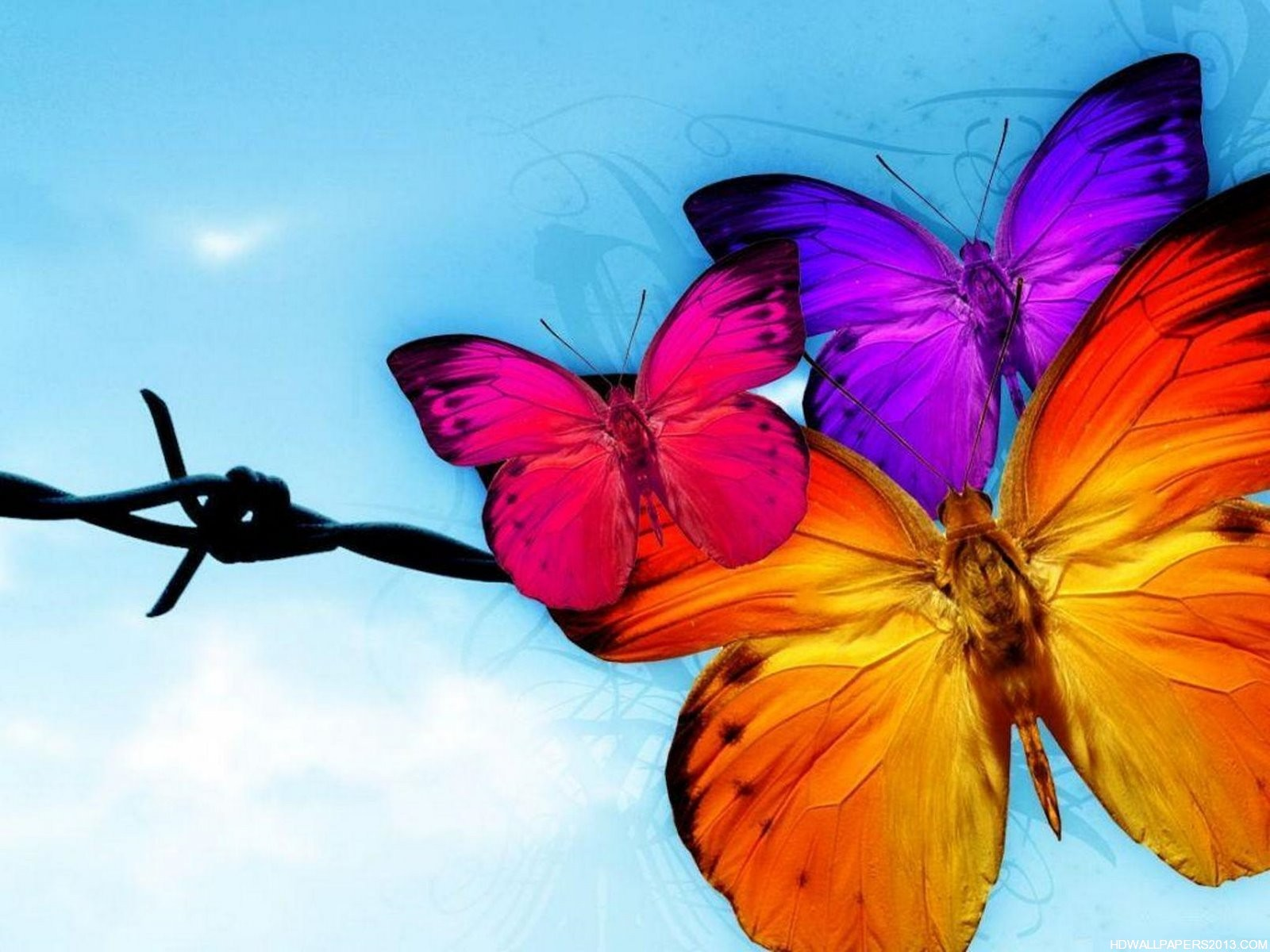 Butterfly Wallpapers For Android
