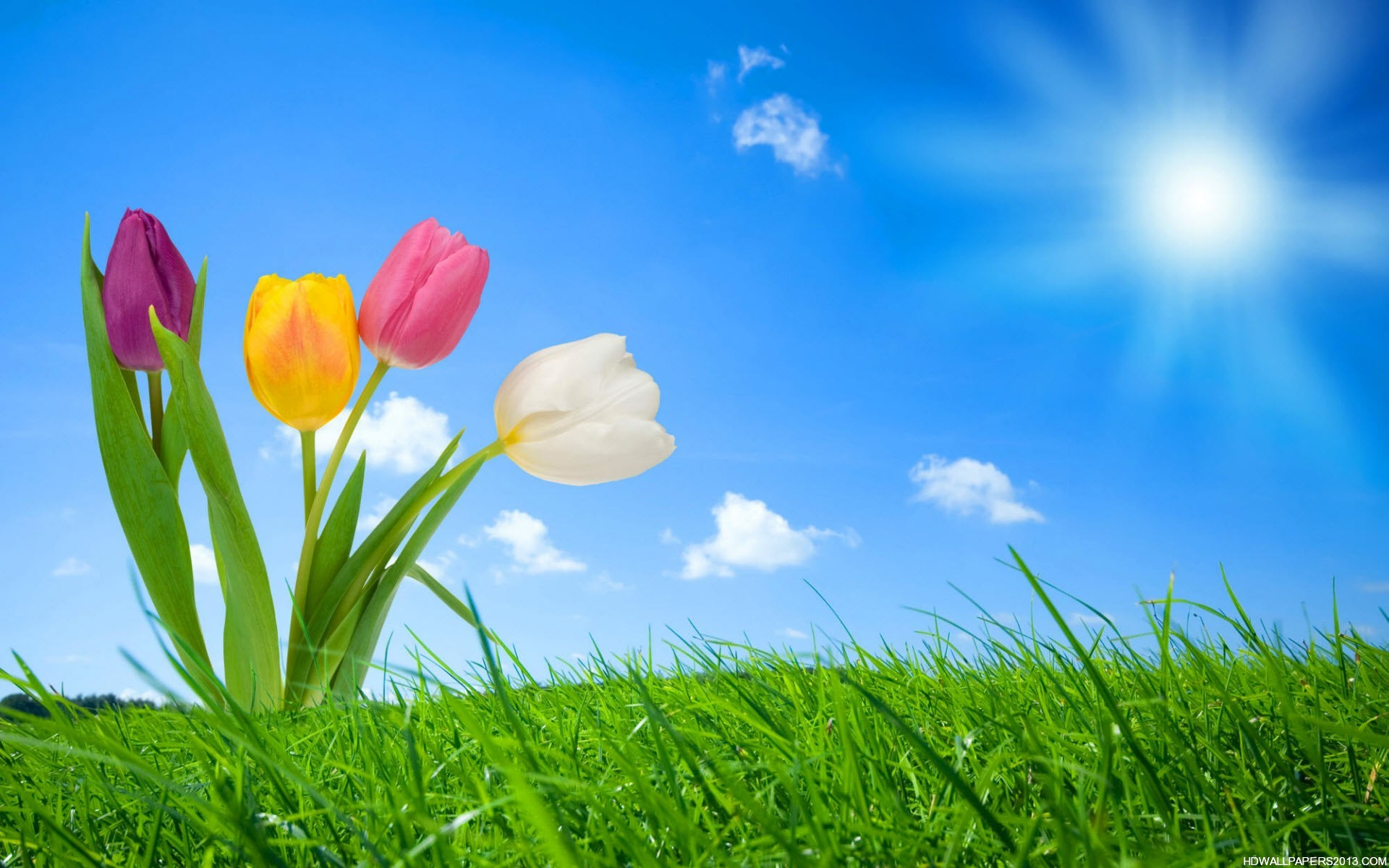 Spring Nature Wallpapers – HD Wallpapers Spring Nature Wallpapers
