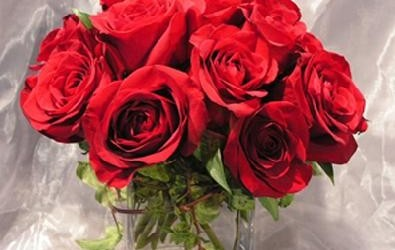 beautiful-red-roses