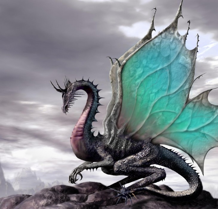Dragon Pictures High Definition Wallpapers High