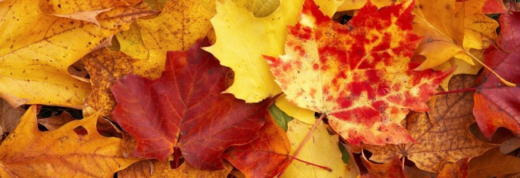 fall-wallpaper-pictures