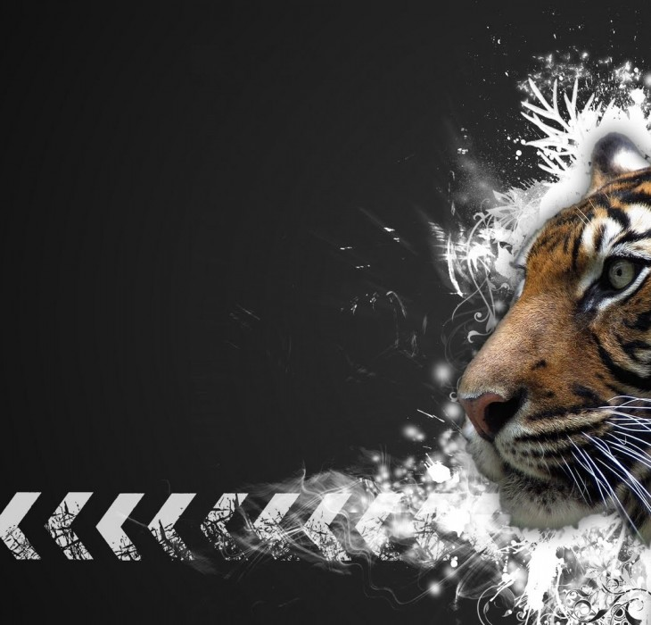 Tiger Wallpaper