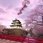 Hirosaki Castle Wallpaper