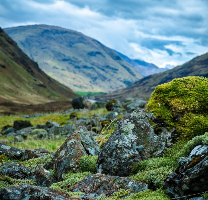 A Scottish valley wallpaper