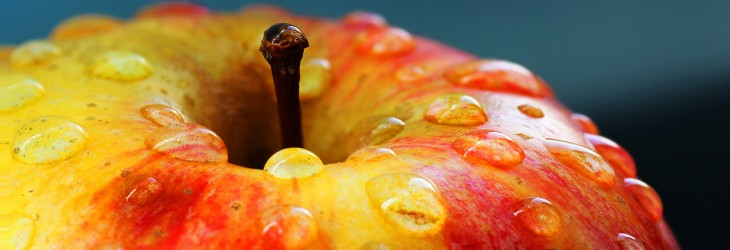 Wet Juicy Fruity Apple