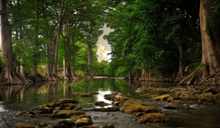Beautiful Secluded River