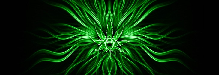 Green Abstract Herbal Symbol