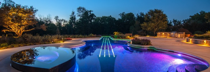 Guitar Shaped Swimming Pool