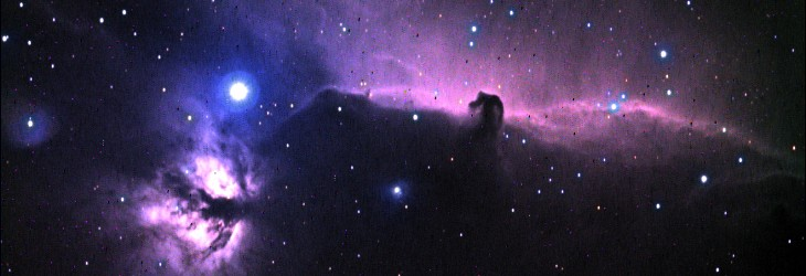 The Horsehead and the Flame Nebulae
