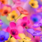 Flower Wallpaper Backgrounds