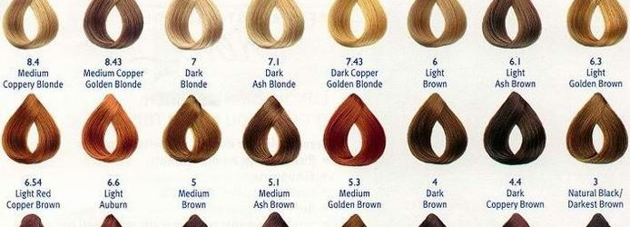 loreal-hair-colour-chart