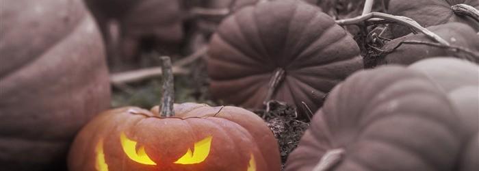 pumpkin-desktop-wallpaper
