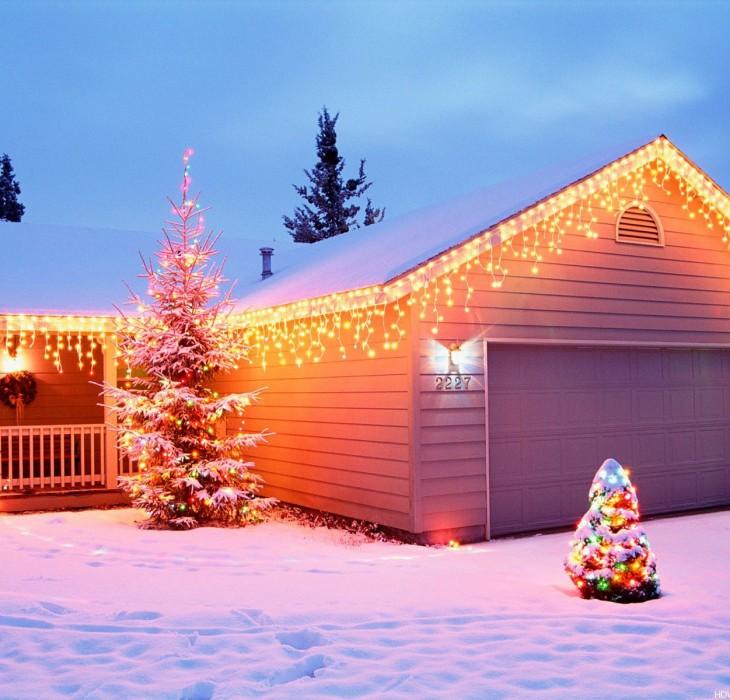 Christmas Trees Wallpaper