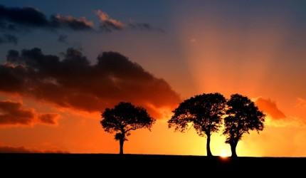 Sunset Desktop Wallpaper