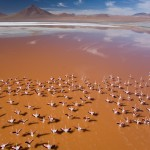 Beautiful Atacama Desert Wallpaper
