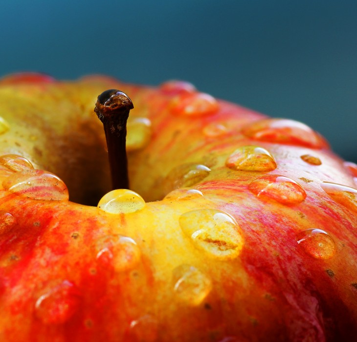 Wet Juicy Fruity Apple